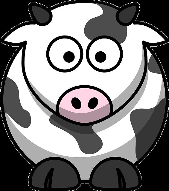 Cow, Milk, Farming, Animal, Eyes, Farm, Cattle, Milking