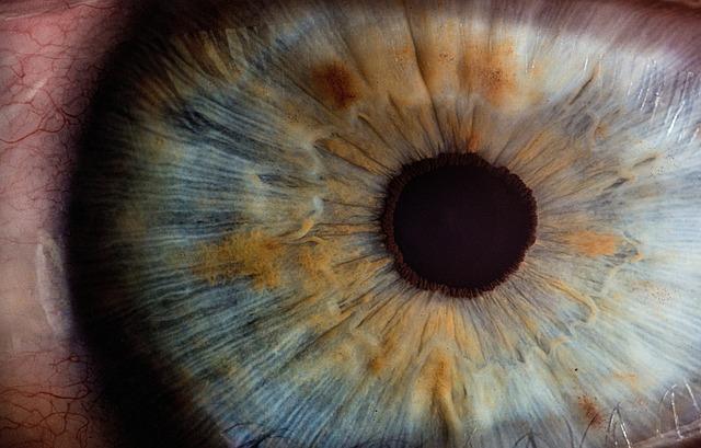 Iris, Pupil, Eyes, Macro, Close Up, People, Man