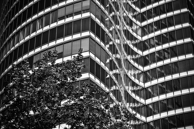 Architecture, Modern, Building, Facade, Glass