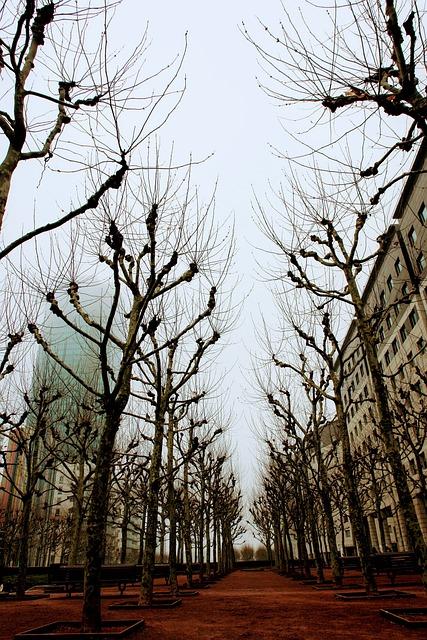 Paris, France, Facade, Architecture, La Defense