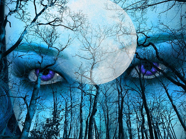 Blue, Forest, Sky, Moon, Face, Eyes, Outdoor, Trees