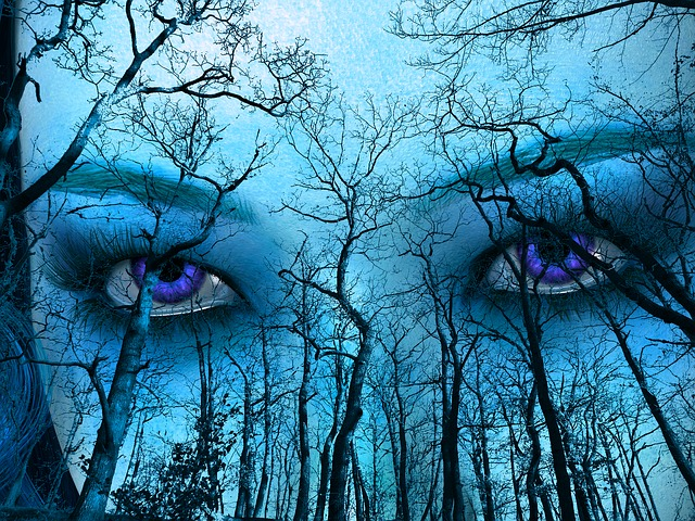 Blue, Forest, Sky, Face, Eyes, Outdoor, Trees, Wood