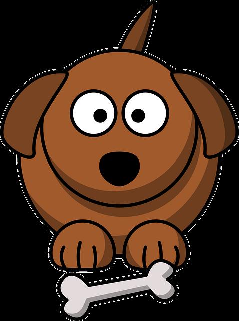 Dog, Bone, Brown, Face, Cute, Fat, Puppy, Pet, Friend