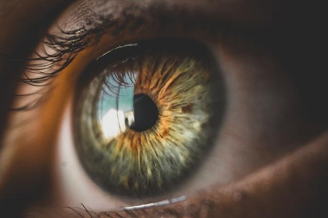 Eyes, Look, Face, Eye, Cat, Girl, Woman, Portrait
