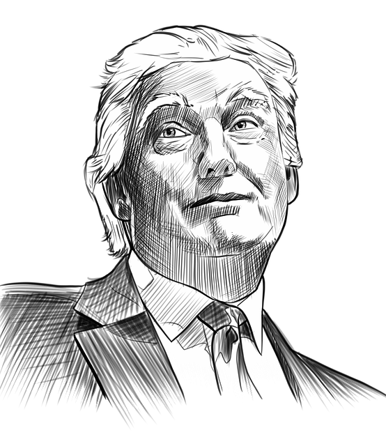 Trump, Portrait, Gage Skidmore, Cross-hatch, Face