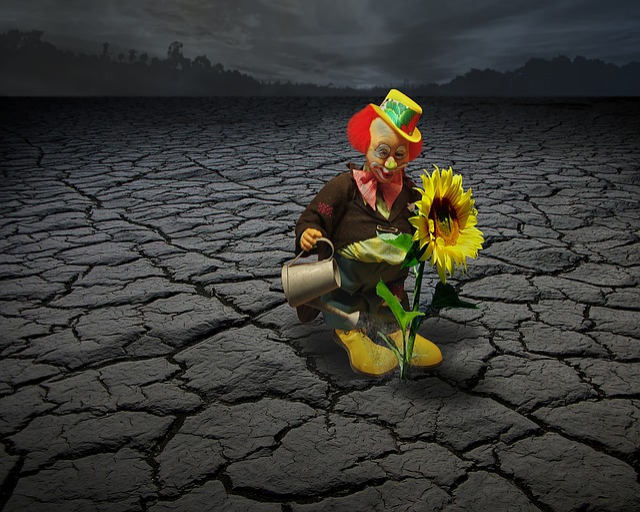 Clown, Circus, Face, Funny, Fun, Sunflower