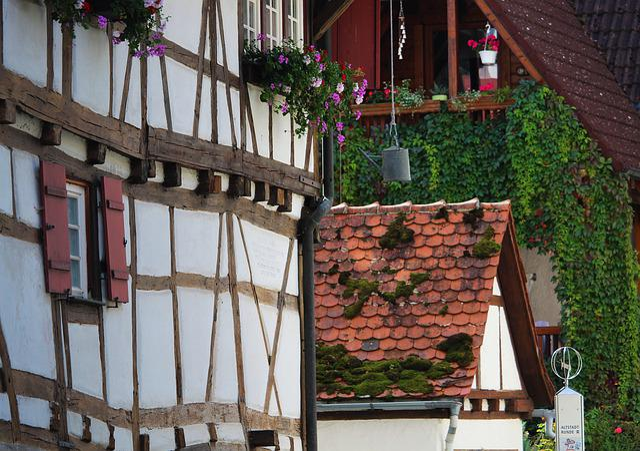 Blaubeuren, Baden Württemberg, Truss, Fachwerkhäuser