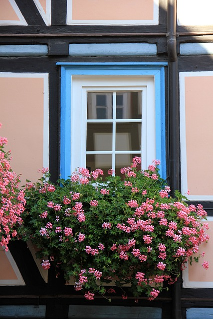 Building, Home, Truss, Fachwerkhaus, Flowers, Flower