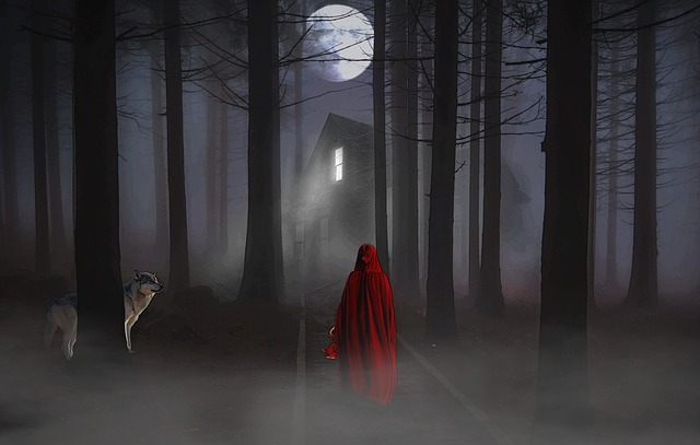 Full Moon, Forest, Woman, Wolf, Imagination, Fairy Tale