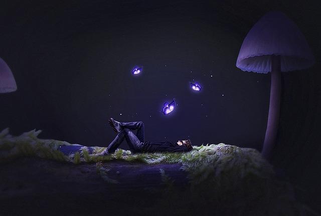 Vùng đất Tự Do, Mushroom, Sleep, Dream, Fairy