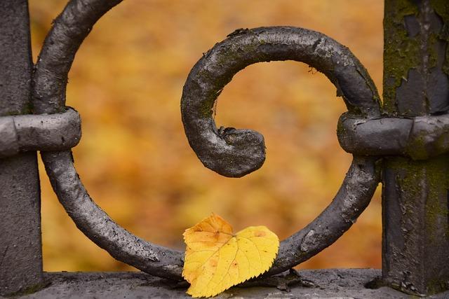 Leaves, Autumn, Leaf, Fall Color, Fall Foliage, Metal