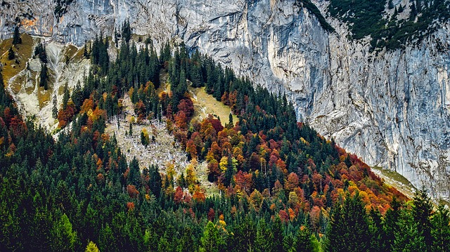 Austria, Fall, Autumn, Landscape, Mountains, Valley