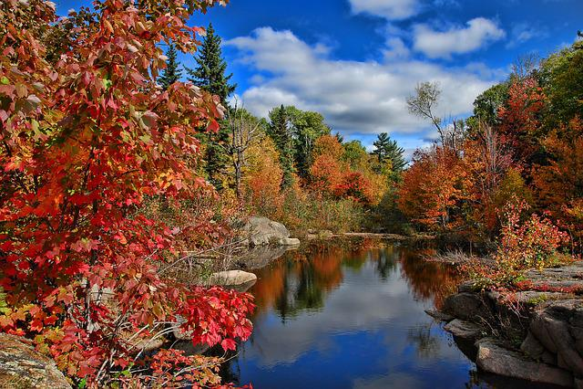 Canada, Autumn, Fall, New Brunswick, Nature, Landscape