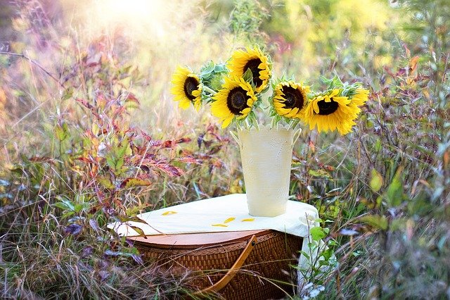 Sunflowers, Vase, Fall, Autumn, Bouquet, Flowers