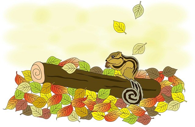 Squirrel, Autumn, Fallen Leaves, Free Illustrations