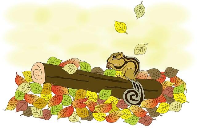 Squirrel, Autumn, Fallen Leaves, Free Illustrations