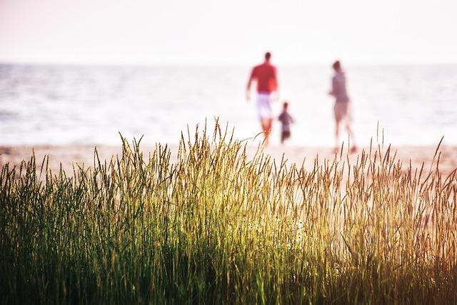 Sea, Brittany, France, Nature, Beach, Coast, Family