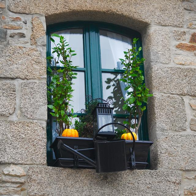 House, Window, Architecture, Family, Wall, Outside
