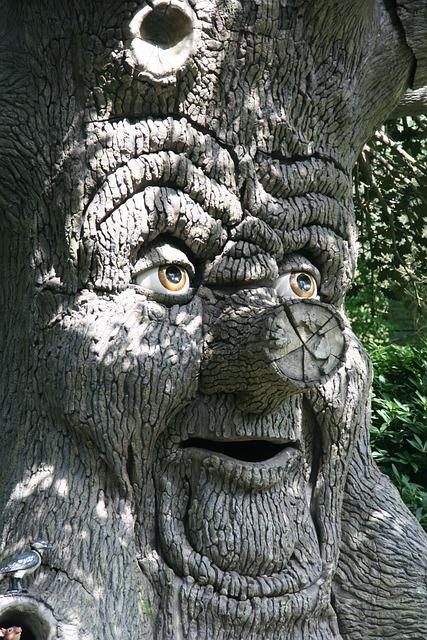 Fairy Tree, Image, Fantasy, Efteling