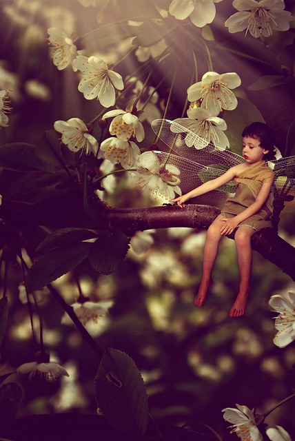 Boy, Flowers, Fantasy, Bug, Magic, Branch, Ant, Model