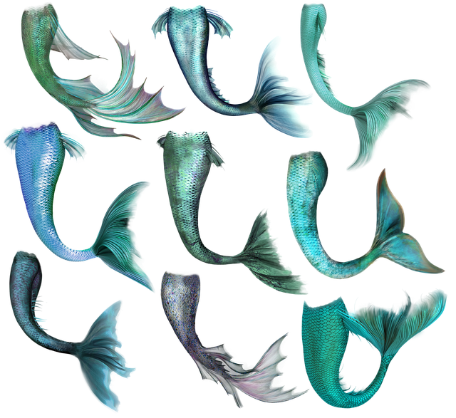 Mermaid, Fish, Tail, Merrow, Fantasy, Magic, Creature
