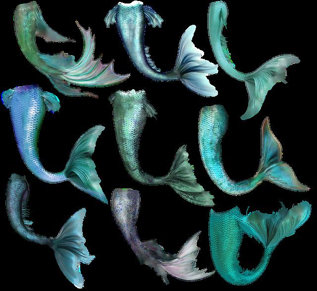 Mermaid, Fish, Tail, Merrow, Fantasy, Magic, Creature
