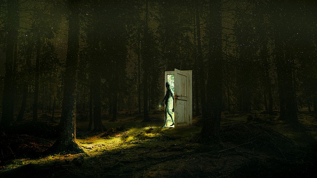 Mystery, Outdoors, Spooky, Fantasy, Dark, Mysterious