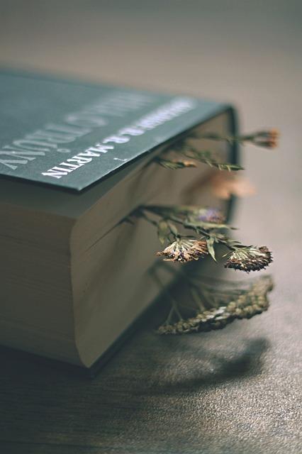 Book, Game Of Thrones, Fantasy, Literature, Reading