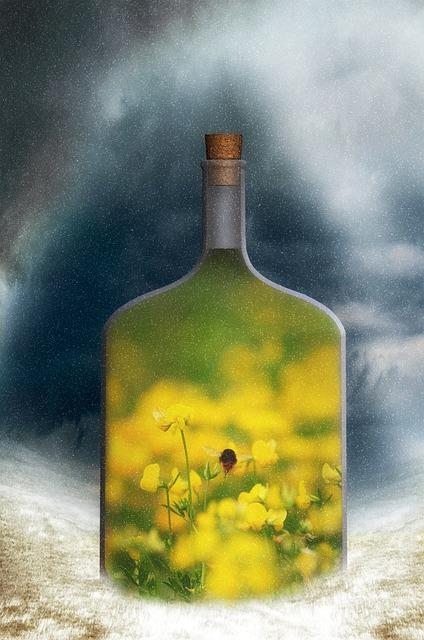 Fantasy, Surreal, Spring, Winter, Oilseed Rape, Hummel