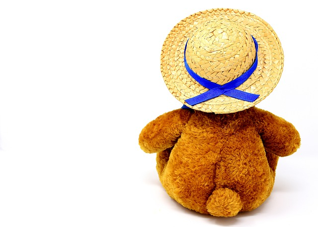 Teddy, Farewell, Stuffed Animal, Hat, Straw Hat