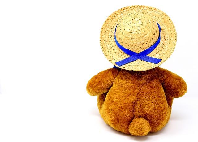 Teddy, Farewell, Stuffed Animal, Hat, Straw Hat