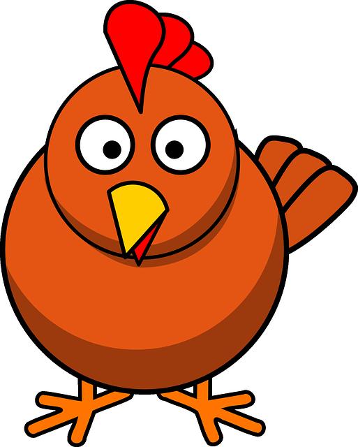 Chicken, Poultry, Animal, Chick, Farm, Hen, Livestock