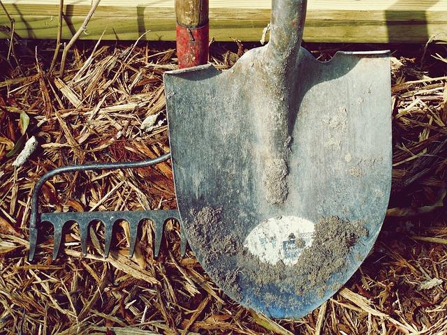 Shovel, Rake, Dirt, Farm, Garden, Hand Tools, Labor