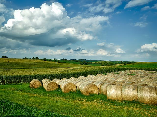 Iowa, Landscape, Scenic, Sky, Clouds, Farm, Rural