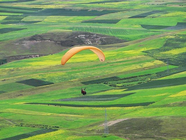 Field, Landscape, Lawn, Farm, Nature, Rural Area