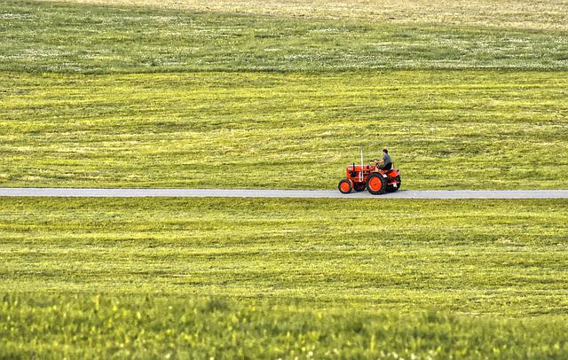 Tractor, Red, Meadow, Field, Agriculture, Vehicle, Farm