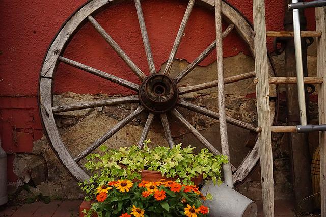 Wagon Wheel, Farm