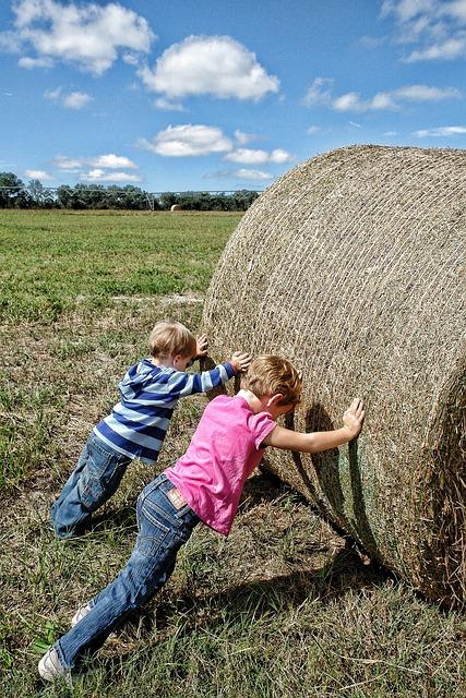 Teamwork, Farm Workers, Co-operation, Farm, Hay, Worker