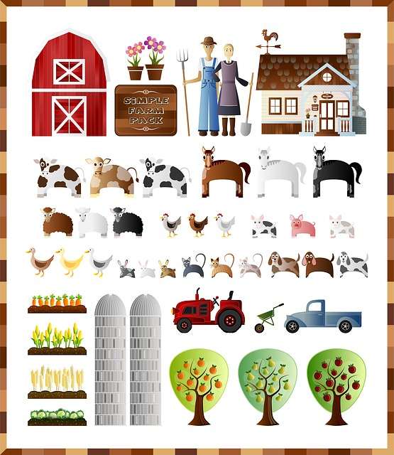Farm, Farm Pack, Farm Set, Farmer, Barn, Flower