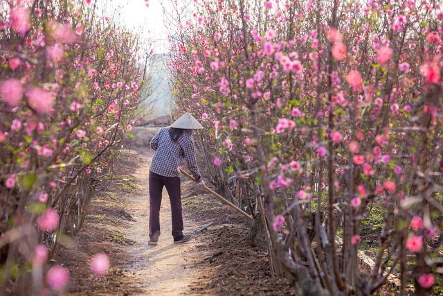 Flowers, Florists, Farmers, Dig Planting, Farmer