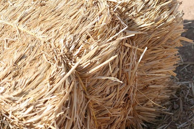 Hay, Bail, Straw, Residue, Crop, Harvest, Farming