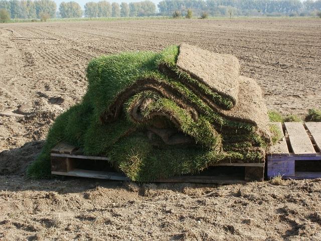 Grass, Sods, Farming, Soil, Dirt, Natural, Field