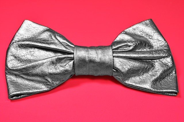 Bow, Silver Bow, Accessory, Fashion Accessory, Style