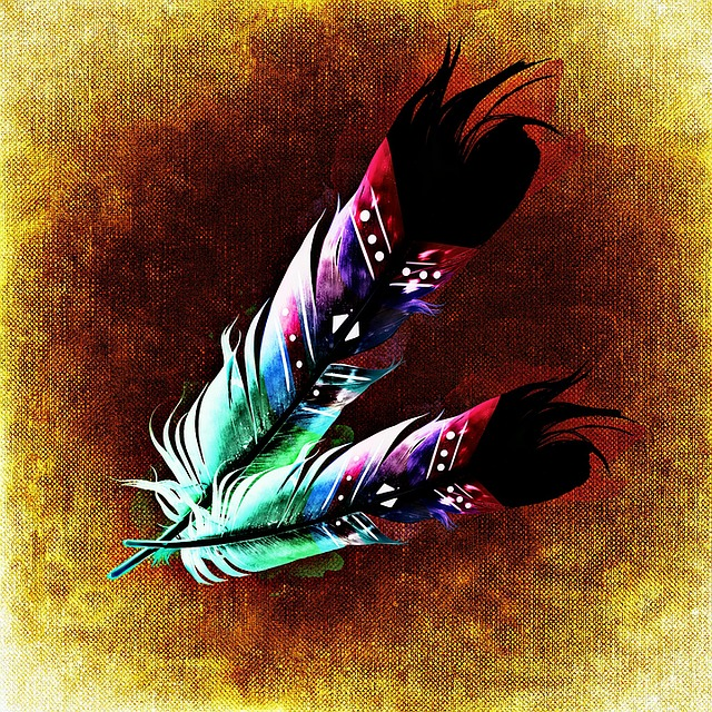 Feather, Bird Feathers, Abstract, Plumage, Colorful
