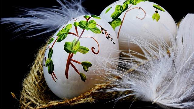 Nature, The Ceremony, Beautiful, Light, Feathers, Bird