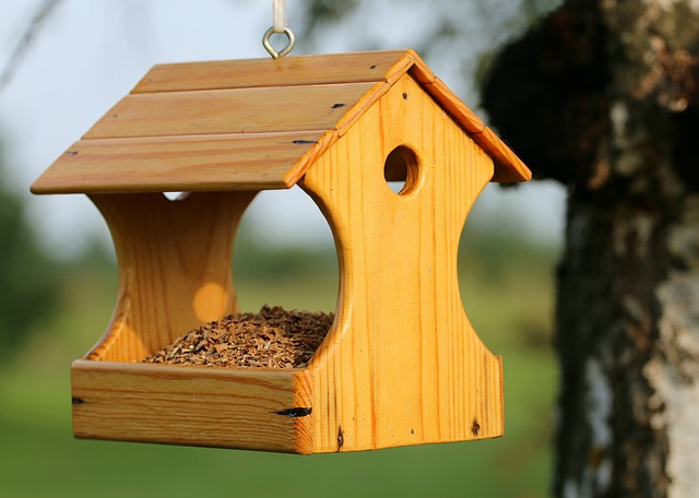 Feeder, Birds, Feed, Help, Cottage, Protection, Nature