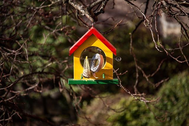 Aviary, Feeding Place, Bird Feeder, Garden