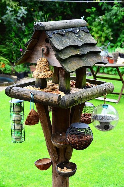 Bird House, Bird Table, Feeding Station, Bird Food