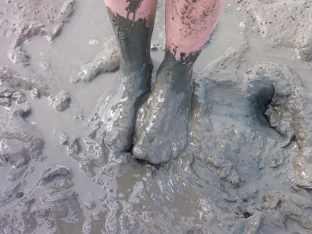 Watts, Mud, Dirty, Foot, Feet, Mudflat Hiking