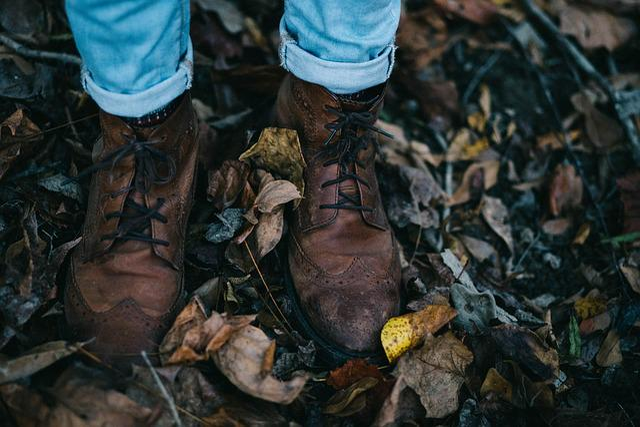 Fall, Feet, Footwear, Leaves, Shoes